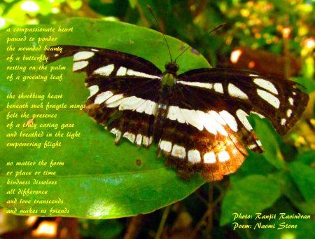 457734_3317705135518_1396590664_o  poem  Ranjit