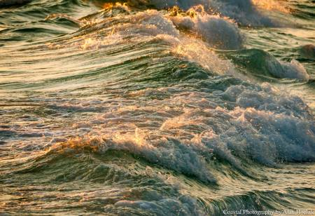 13458680_1008266512614666_1412036563021915903_o.jpg  The elegance of the beauty of flow........of living in the flow of love