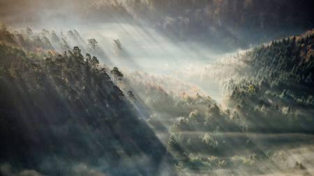 12378027_904719232945054_4506019817146331913_o.jpg light falls on the landscape