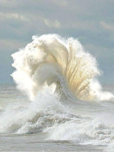 12565403_920271574723153_6996995918585239512_n.jpg wave